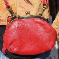 Evanna Clip and Clutch Small Red Leather