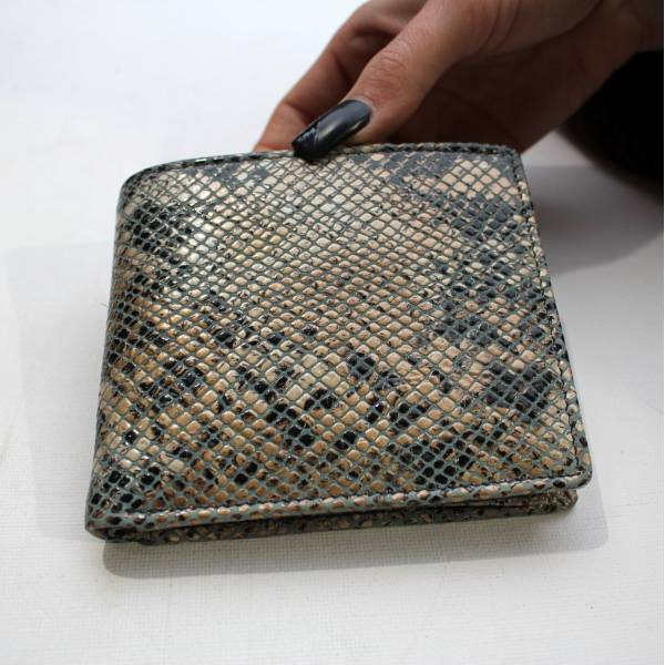 Alberta Snake print Blue Leather Wallet